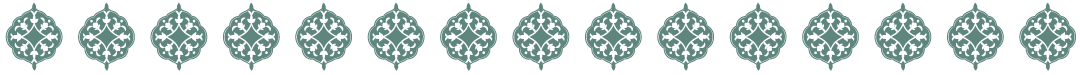 Barkha-shapeblack-line